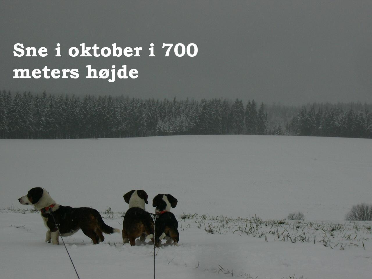 sne700meters